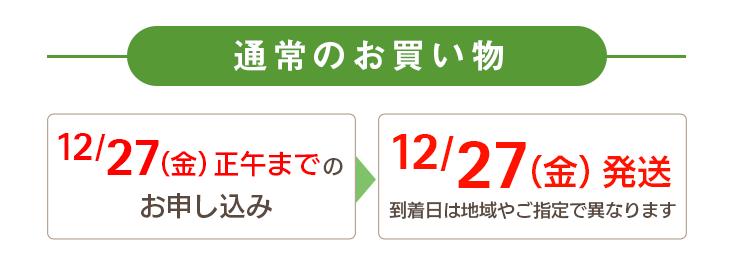 通常のお買い物 12/27(金)正午までのお申し込み→12/27(金)に発送