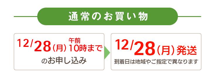 通常のお買い物 12/28(月)午前10時までのお申し込み→12/28(月)に発送