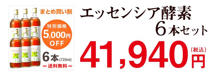 エッセンシア酵素ドリンク 6本セット 38,833円(税抜)